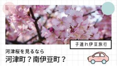 【2018子連れ旅行】河津桜は河津町?南伊豆町?どっちがおすすめ?