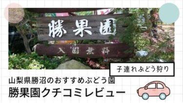 2017山梨県勝沼のおすすめぶどう園『勝果園』クチコミレビュー!子連れで行こう!