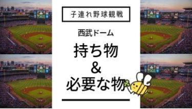 初めての子連れ野球観戦持ち物・必要なものは?【西武ドーム(メットライフドーム)編】
